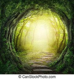 Camino en bosque oscuro