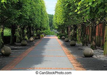 Camino forrado de árboles