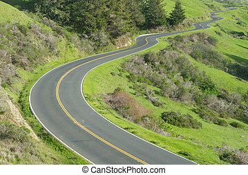 Camino largo y sinuoso a lo largo de la autopista de la costa del Pacífico