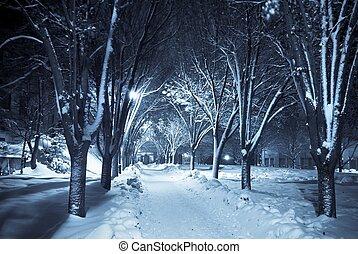 Camino silencioso bajo la nieve