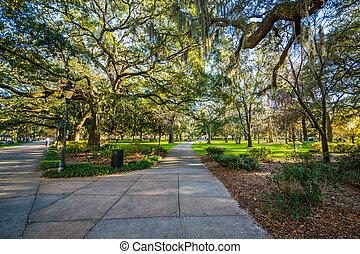 Caminos y árboles con musgo español, en el parque forsyth, en Savannah, Georgia.