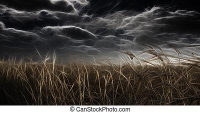 Campo abstraído oscuro y cielo