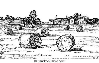 Campo con pajares.