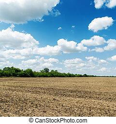 Campo de agricultura después de cosechar bajo el cielo azul nublado
