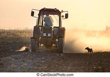 Campo de arado Tractor
