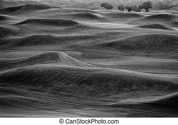 Campo de golf BW