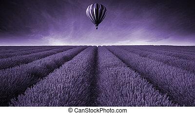 Campo de lavanda, paisaje de verano con globos aerostáticos