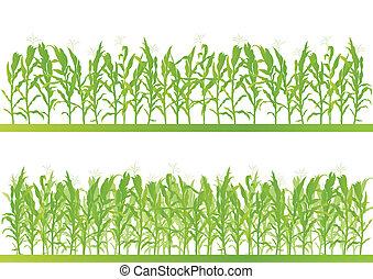Campo de maíz detallado de paisajes de ilustración vector de fondo