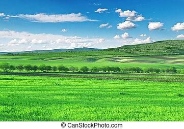 Campo, montañas y cielo azul