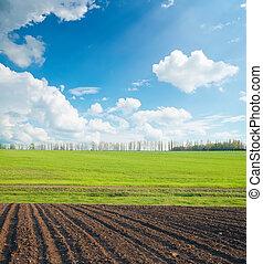 Campo negro y verde bajo cielo nublado