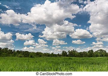 campo, paisaje, verde, cloudscape
