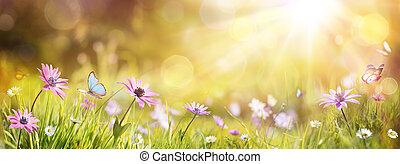 campo, resumen, pasto o césped, defocused, soleado, primavera, púrpura, -, mariposa, margaritas