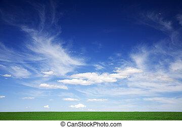 Campo verde, cielo azul, nubes blancas en primavera