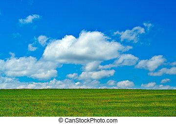 Campo verde, cielo azul y nubes blancas
