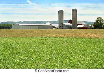 Campo verde y granja