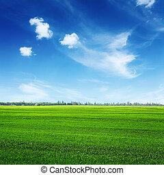 Campo verde y nubes en el cielo azul