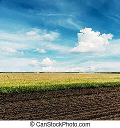 Campos agrícolas y cielo azul profundo