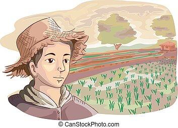 Campos de arroz para agricultores