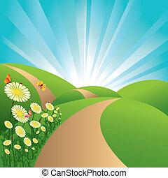 Campos de primavera, campos verdes, cielo azul, flores y mariposas