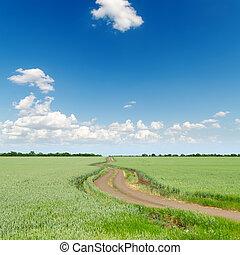 Campos verdes con camino bajo el cielo azul oscuro