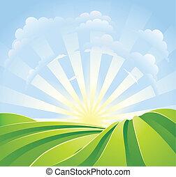 Campos verdes idílicos con rayos de sol y cielo azul