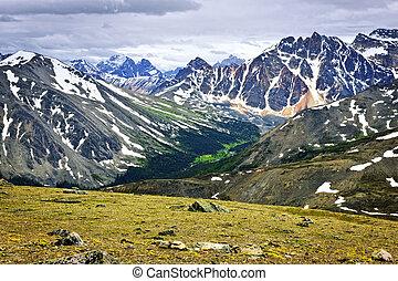 canadá, montañas, rocoso, parque nacional, jaspe