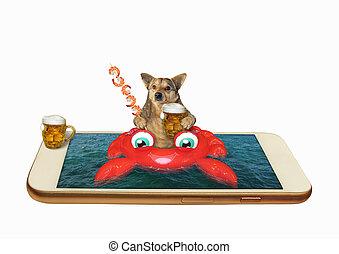 cangrejo, perro, inflable, teléfono