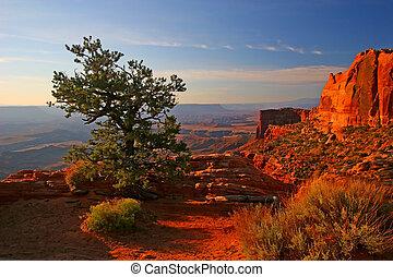 canyonlands, salida del sol