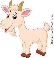 carácter, caricatura, goat