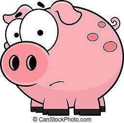 caricatura, cerdo, preocupado