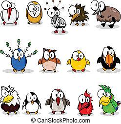 caricatura, colección, aves