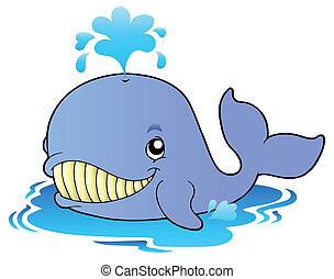 caricatura, grande, ballena