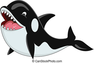 caricatura, orca