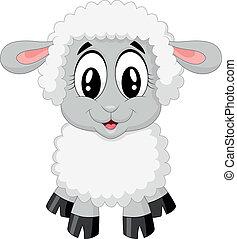 caricatura, sheep, lindo