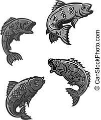 carpa, pez, percha, bajo