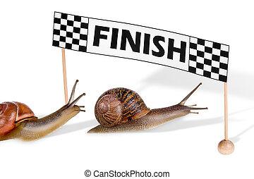carreras, caracoles