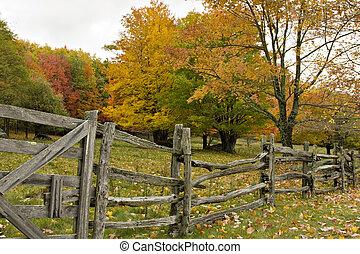carril, dividir, cerca, otoño
