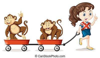 carritos, niña, tirar, monos