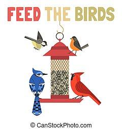 cartel, pájaro, alimentación, color, vector, plano