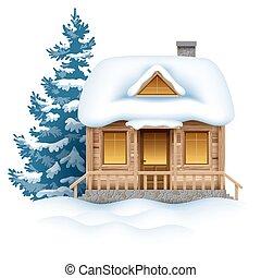 casa, invierno