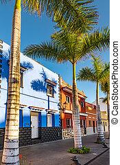 Casas coloridas, palma en la calle Puerto de la Cruz, pueblo tenerife Canary Islands