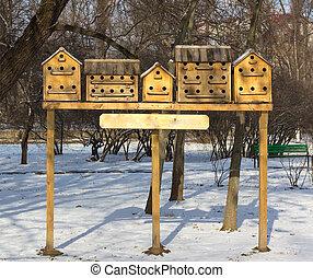 casas, parque, pájaro