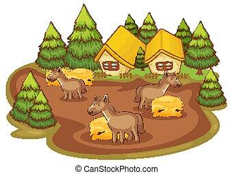 casas, plano de fondo, caballos, blanco