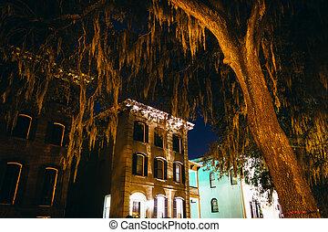 Casas y robles en la calle Drayton por la noche en S