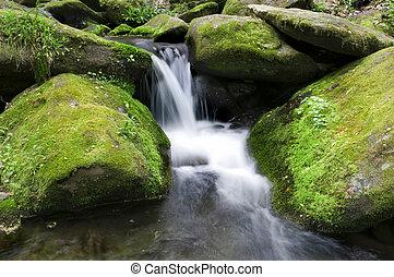Cascada Mossy