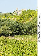 Castillo en Durban-corbiere con viñedos, languedoc-roussillon, Francia