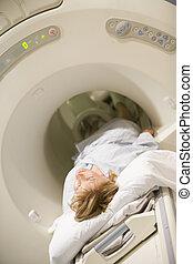 (cat), paciente, el experimentar, exploración, tomografía axial computarizada