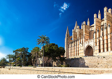 Catedral palma palma gótica la seu