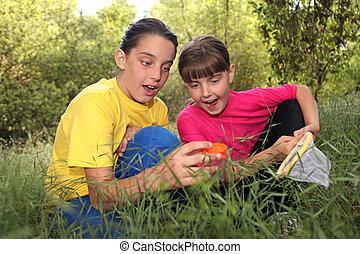 Caza de bichos en el bosque