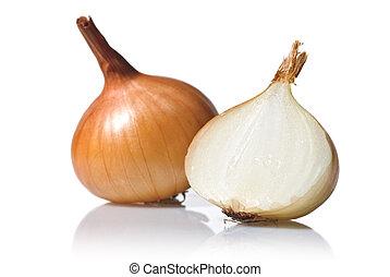 Cebolla aislada en blanco